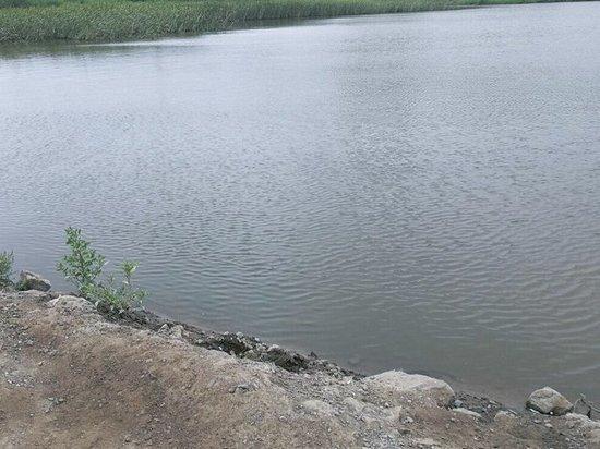 Жители Владивостока добились решения проблемы с озером