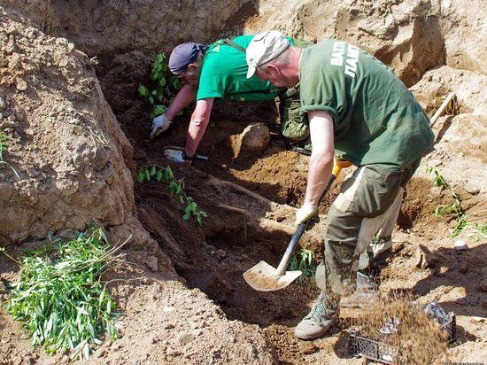 В Подмосковье наткнулись на гигантский могильник: более сотни останков