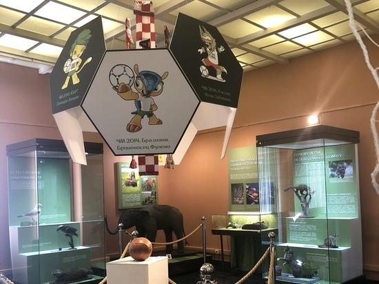 Московские музеи отметили чемпионат мира оригинальными экспозициями