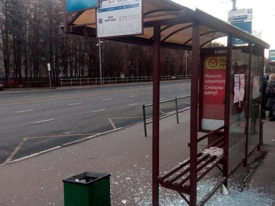 Жительница Мичуринска, разбившая остановку, осуждена к обязательным работам