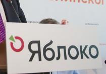 Отказ «Яблока» участвовать в выборах мэра Москвы удивил оппозицию