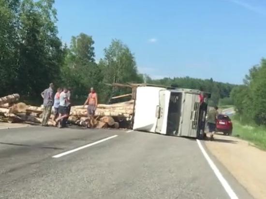 Водитель груженого лесовоза остался жив после аварии под Костромой