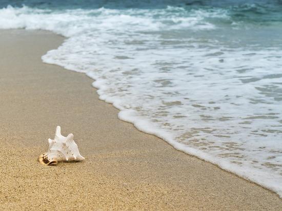 В Алтайском крае функционируют 44 безопасных пляжа