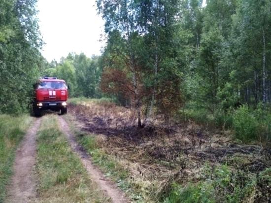 Десять пожарно-спасательных опергрупп патрулируют леса Костромской области