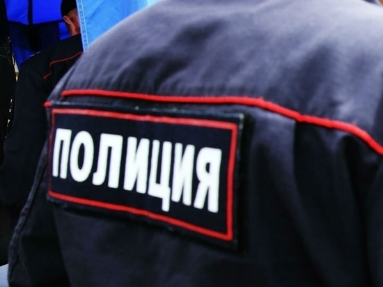 В Кирсанове 17-летнего подростка подозревают в нападении на полицейского