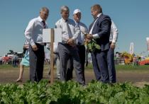 Александр Гусев обозначил приоритеты развития сельского хозяйства Воронежской области