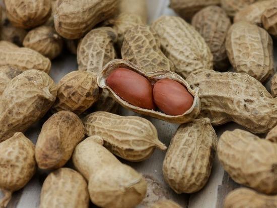 Орехи помогают мужчине стать отцом