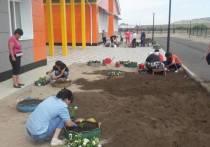 Новая сельская школа-интернат  в Туве получила аграрный профиль