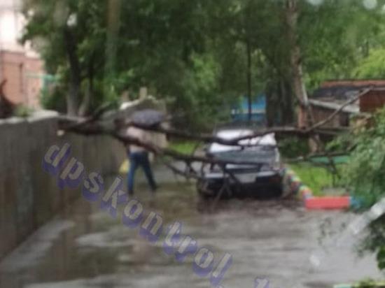 Из-за проливных дождей во Владивостоке падают деревья
