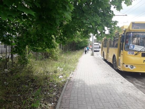Рожденные под знаком свиньи: водители калужских троллейбусов устроили свалку
