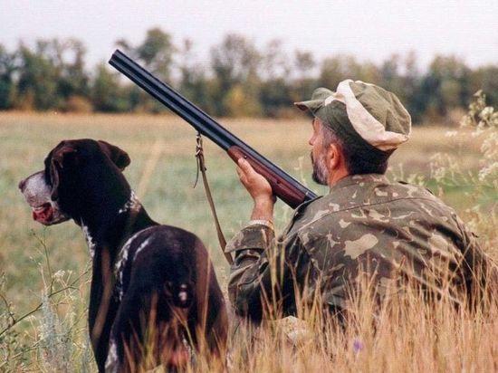 В Тверской области незаконно охотиться станет дороже