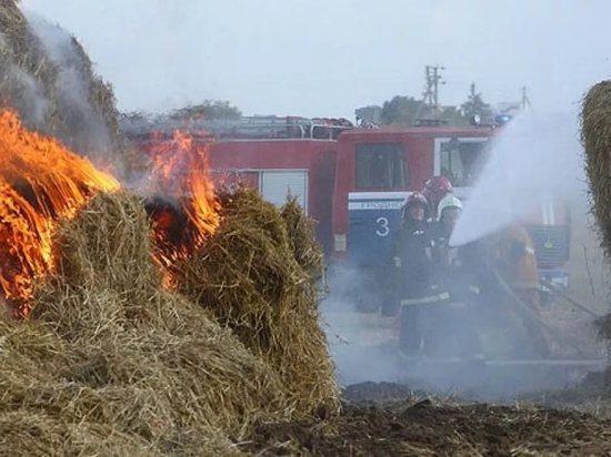 600 тонн сена сгорело в Ефремовском районе