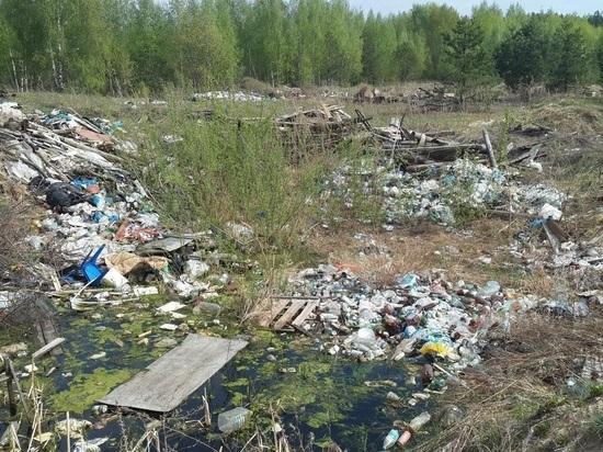 В Татарстане прокуратура через суд добивается ликвидации нелегальных свалок