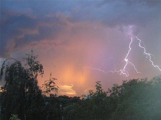 Метеопредупреждение: в Тульской области – грозы и сильный ветер