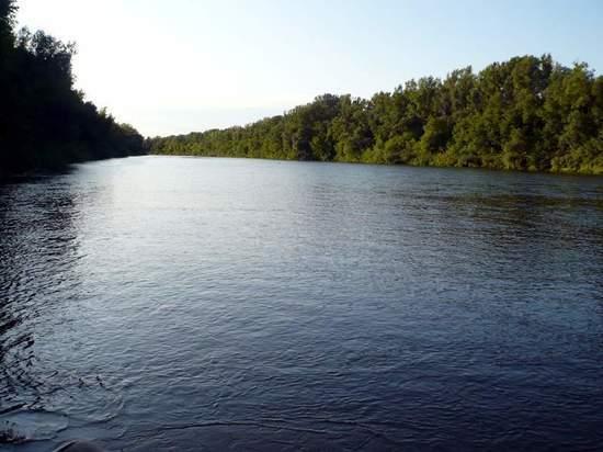 В Бузулуке девочка впала в кому после купания в реке