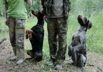В охотугодьях Татарстана «гулять собак воспрещается»!