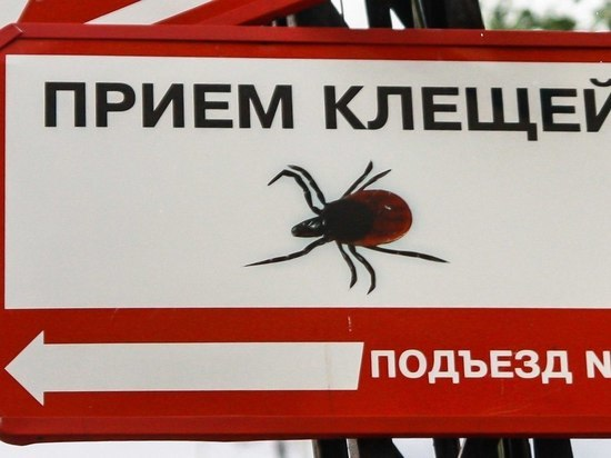 Заболеваемость в республике клещевыми инфекциями – на уровне прошлого года