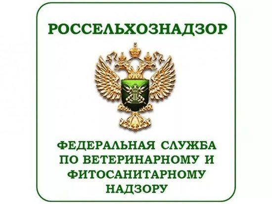 Тверской Россельхознадзор досмотрел древесину, картофель и коробки – нарушений не выявлено