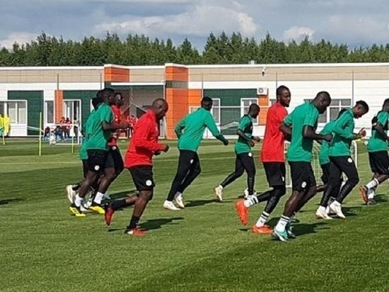 Футбольный бум: власти намерены строить поля в районах Калужской области