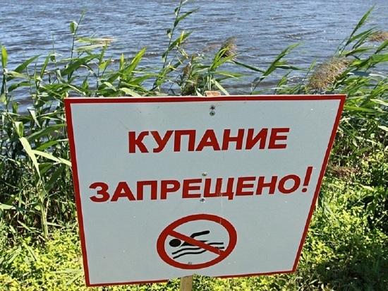 В Тамбовской области 19 водоемов не пригодны для купания