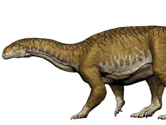 Обнаружены древнейшие останки гигантского динозавра