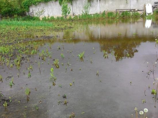 Огороды курян вновь ушли под воду