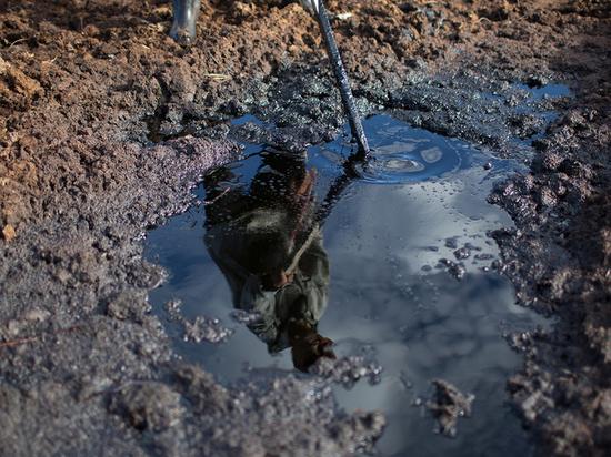 Россельхознадзор хочет взыскать с ПАО «Оренбургнефть» 576 000 рублей за ущерб почвам