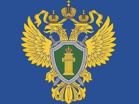 В Ичалковском районе Мордовии нашли две опасные свалки