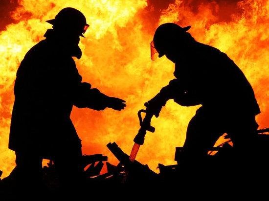 Двое сгорели при пожаре в Плесецком районе