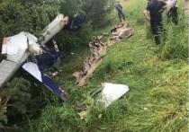 Заместитель полпреда президента России в ПФО пострадал при крушении самолета в Кировской области