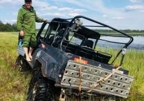 А ну в болото: журналисты нашли затерянный мир в Тверской области