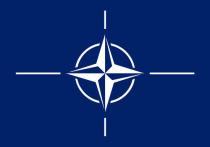 В Европарламенте призвали к роспуску НАТО из-за утраты срока годности