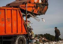 Оренбуржью надо избавиться от сотен несанкционированных свалок на фоне роста тарифа на складирование ТБО