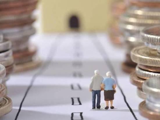 «Нулевые» чтения пенсионного законопроекта прошли в Москве с участием Тульской области