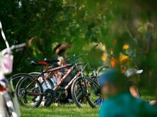 О правильном выборе велосипедов волгоградцам рассказал эксперт