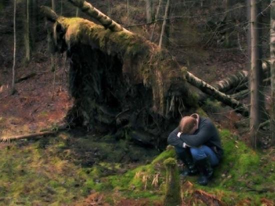 Две недели проплутал в лесу заблудившийся житель Архангельской области