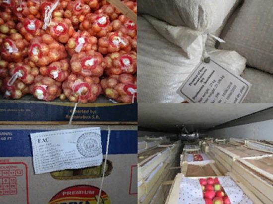 В Оренбуржье  не пропустили свыше 344 тонн продукции из Казахстана и Кыргызстана