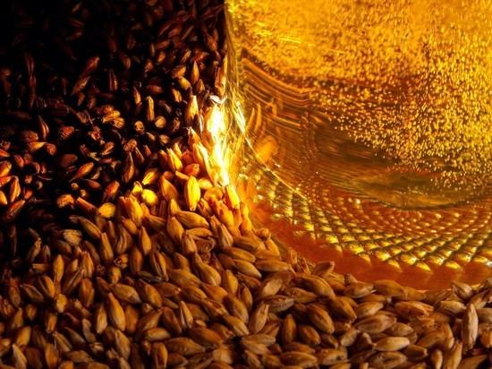 Омским пивоварам увеличили субсидию на закупку ячменя