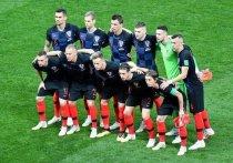 Госдума пожелала Хорватии победы на ЧМ-2018 после извинений Виды