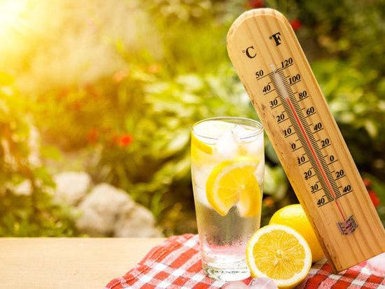Погода на 13 июля: жара в Тульской области продолжается