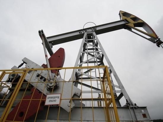 В Татарстане начал работу Нефтяной саммит-2018