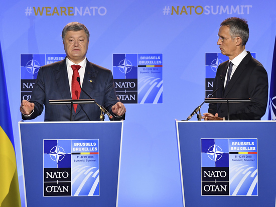 Мечтать не вредно: Киеву НАТО не светит