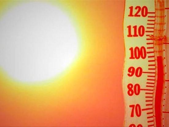 В Оренбургской области в ближайшие сутки ожидается +31°