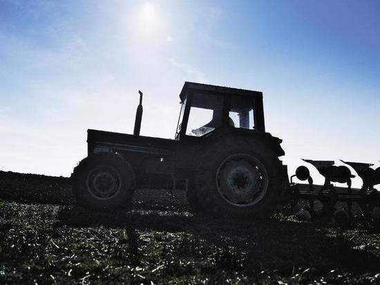 ВОмске ожидают подорожания хлеба из-за цен набензин