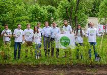 «Зеленые» силы призывают не оставаться равнодушными к экологическим проблемам