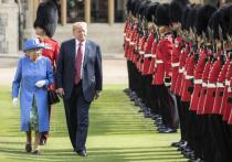 Times: принцы Уильям и Чарльз проигнорировали встречу с Трампом