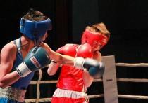 В Элисту приедут более 250 боксеров из 27 стран мира
