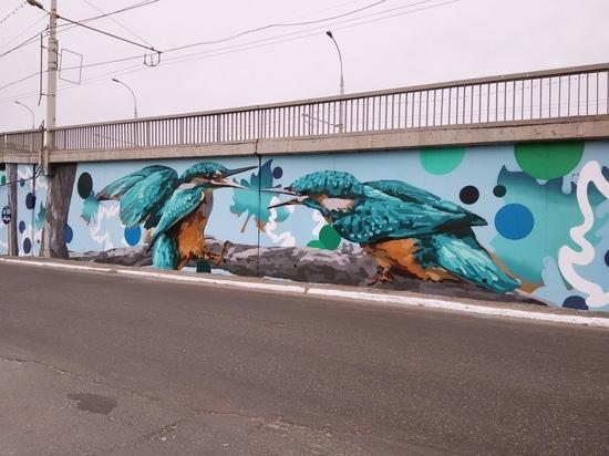 """В Новый мост в Астрахани """"врезались"""" птички"""