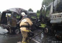 В Татарстане в результате столкновения загорелись грузовик и «УАЗ», погибли 4 человека