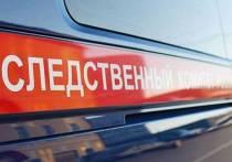Брянская группировка промышляла бандитизмом и убийствами в Калужской области